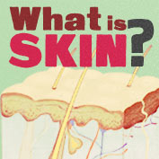 What is Skin – Square Thumbnails