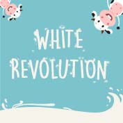 The White Revolution in India