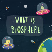 Major Domains of the Earth – Biosphere
