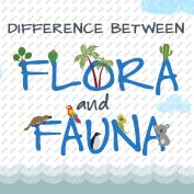 What is Flora and Fauna?
