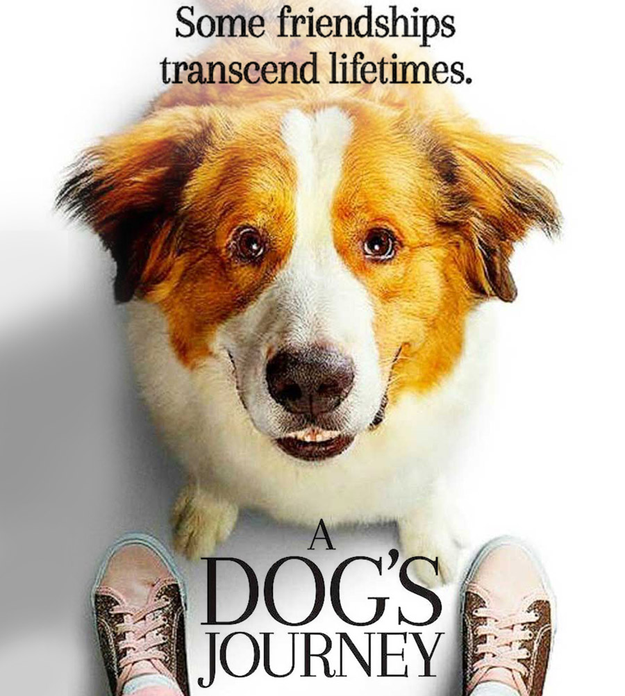 A Dog's Journey – Movie Review
